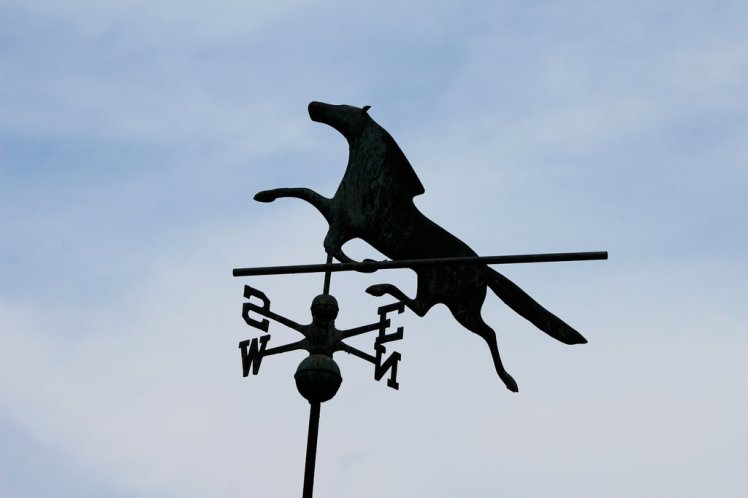 wind_vane_by_foxsilong-d8xq3ec